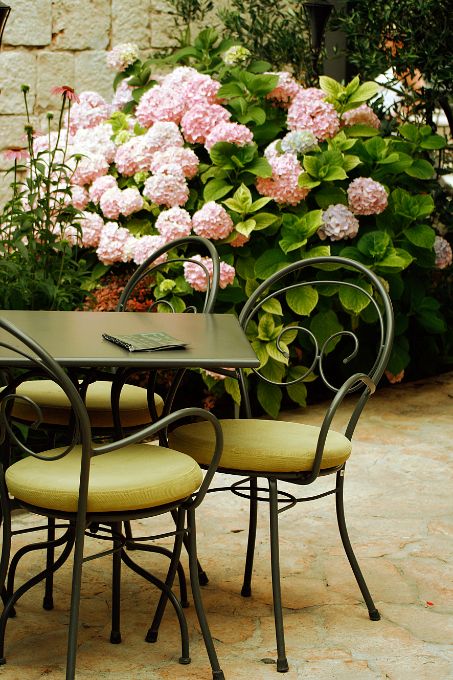 Hortensien im Cafe