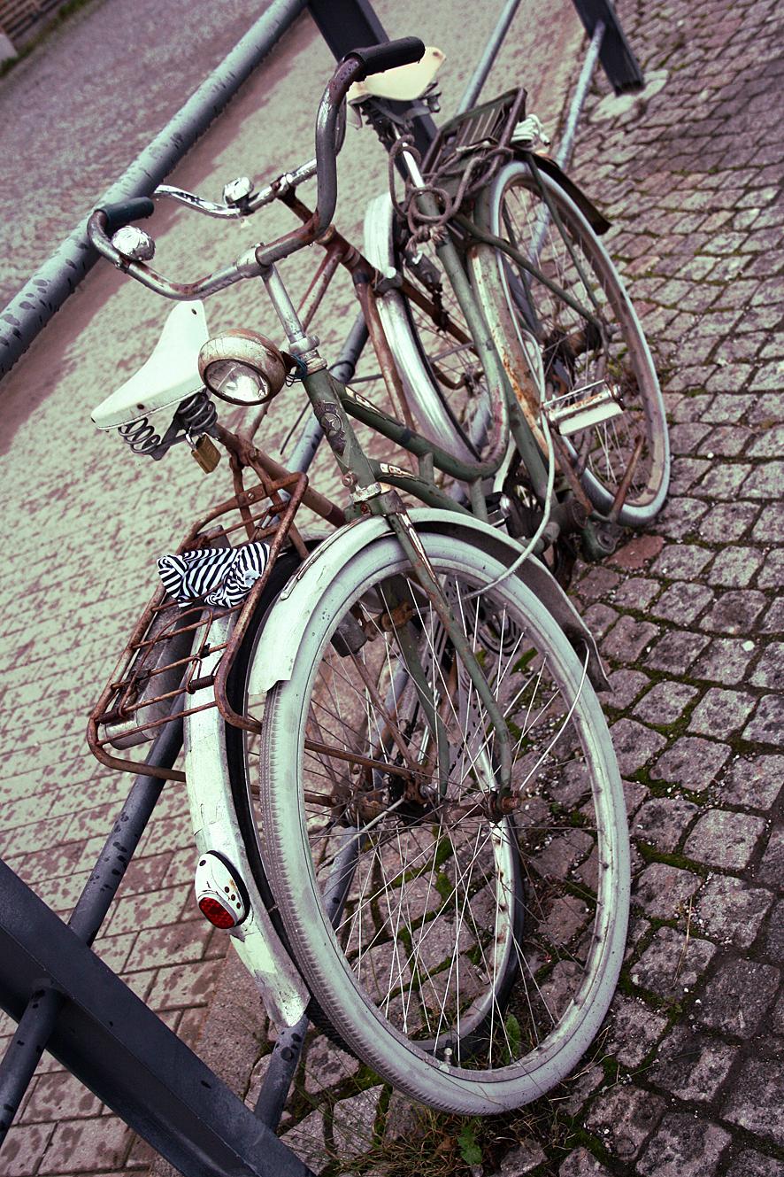 Verrostete Fahrräder in Hamburg