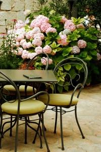 cafe mit hortensien